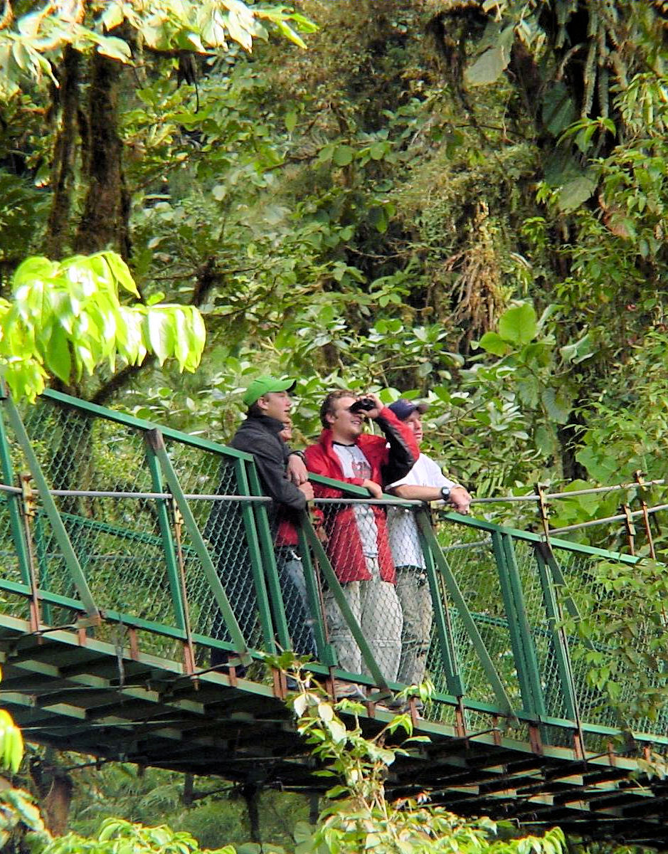 Rainforest  expedition and Banana Plantation Tour