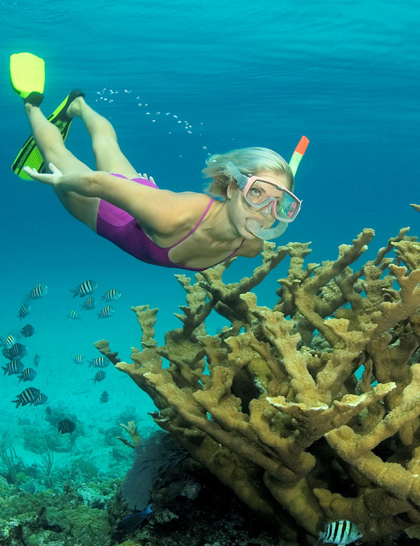 Nassau Snorkel Adventure - Half day