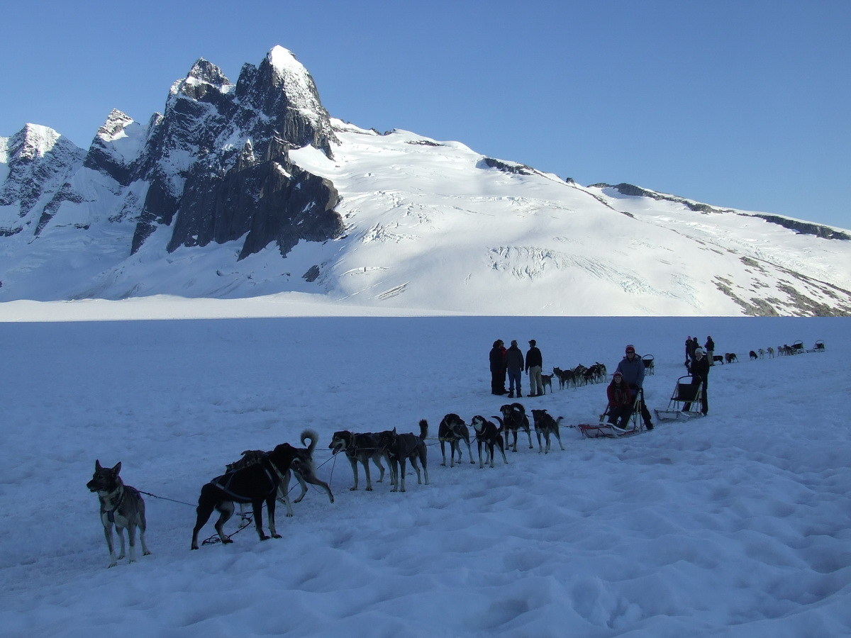 Helicopter Excursions  Glacier Landing and Dog Sledding  with Supplemental Charge