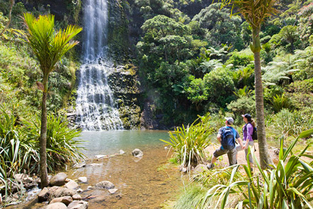 Auckland All Inclusive Tour Full Day