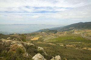 Discover the Golan Heights & Wine Tasting