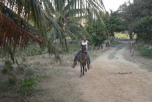 Roatan Horseback Riding and Beach Break