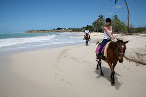 Horseback Riding, Rainforest & Hacienda