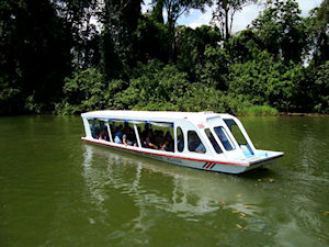Wildlife Expedition & Crocodile Encounter by Boat