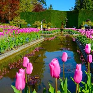 Best Deluxe Victoria City Butchart Gardens Combo Tour Shore Excursion At Victoria Alaska