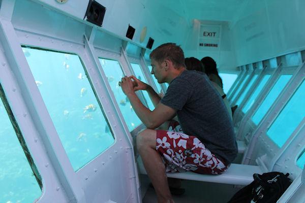 Best Roatan Glass Bottom Boat Shore Excursion At Roatan