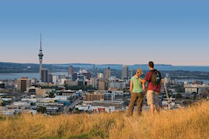 Auckland Highlights Half Day tour